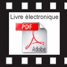 LE YI KING PRATIQUE - Livre électronique